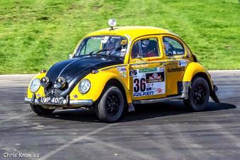 Beetle 2up