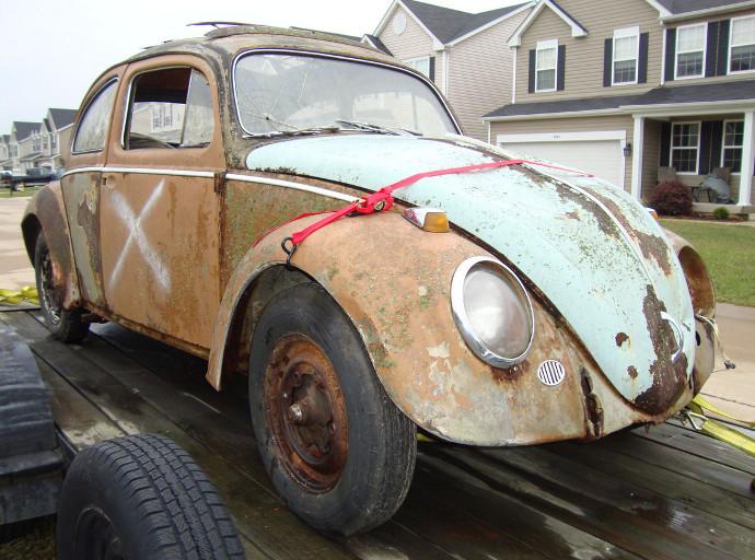Beetle resto