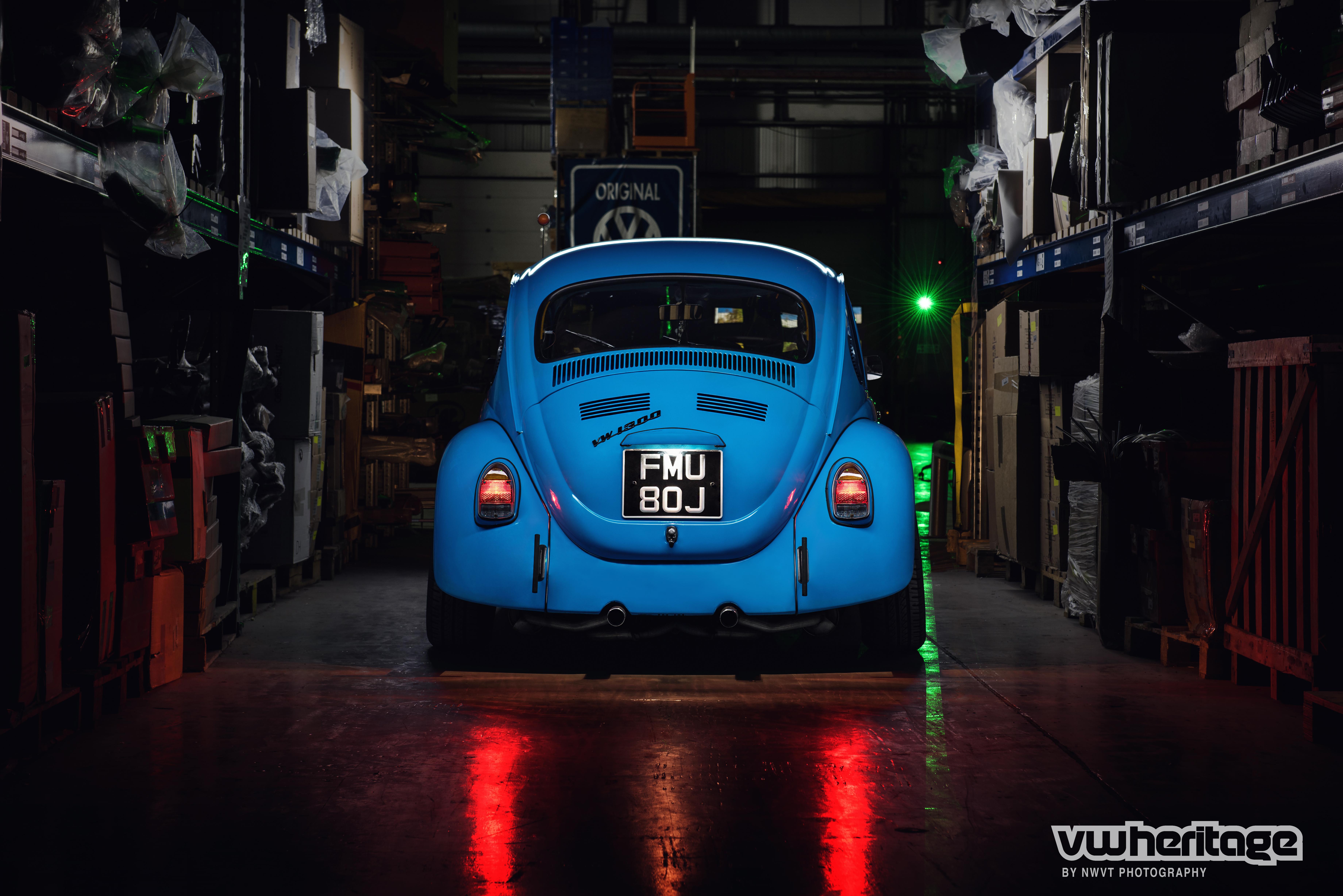 Beetle Blue Back