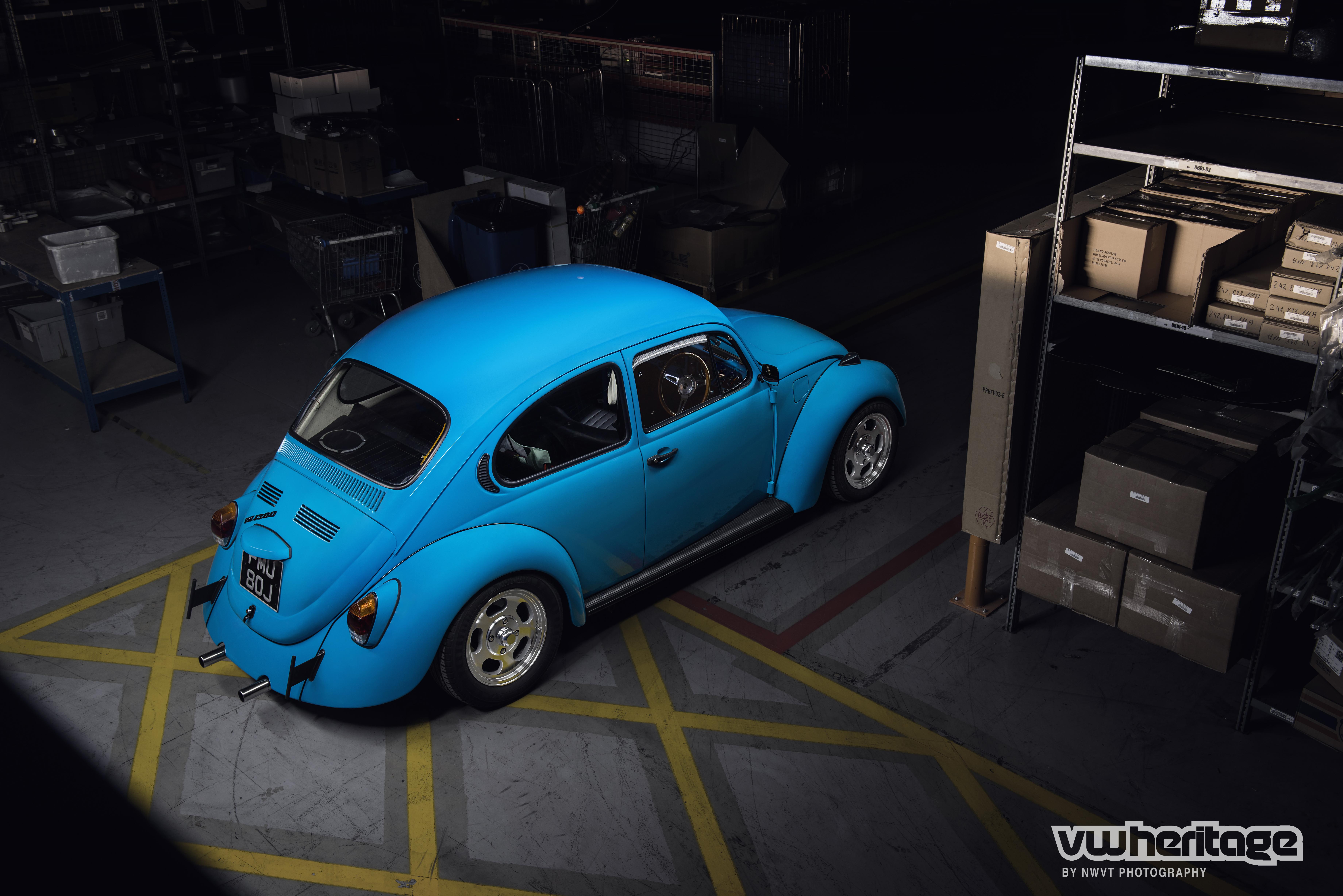 Beetle Blue BirdsEye