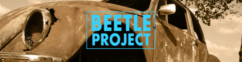 Beetle Project Header