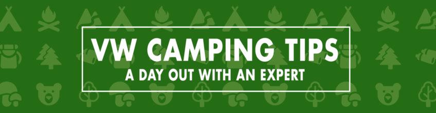 Beetle Project Header